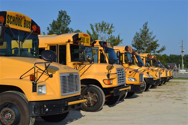 DCS school buses are lined up and ready to head out