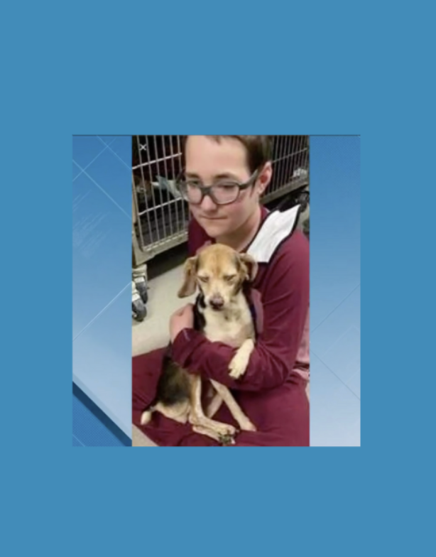 DCS Student Honored with Hero to Animals Award