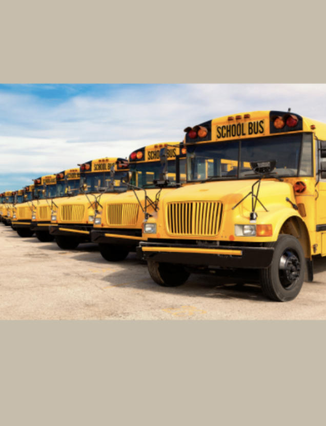 A picture of several school buses parked in a row