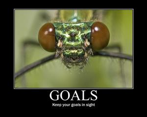 Goals: Keep your Goals in Sight